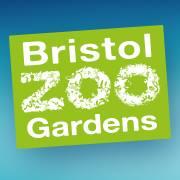 Bristol Zoo Promo Codes
