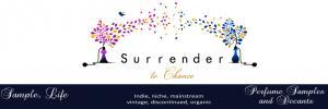 surrendertochance.com